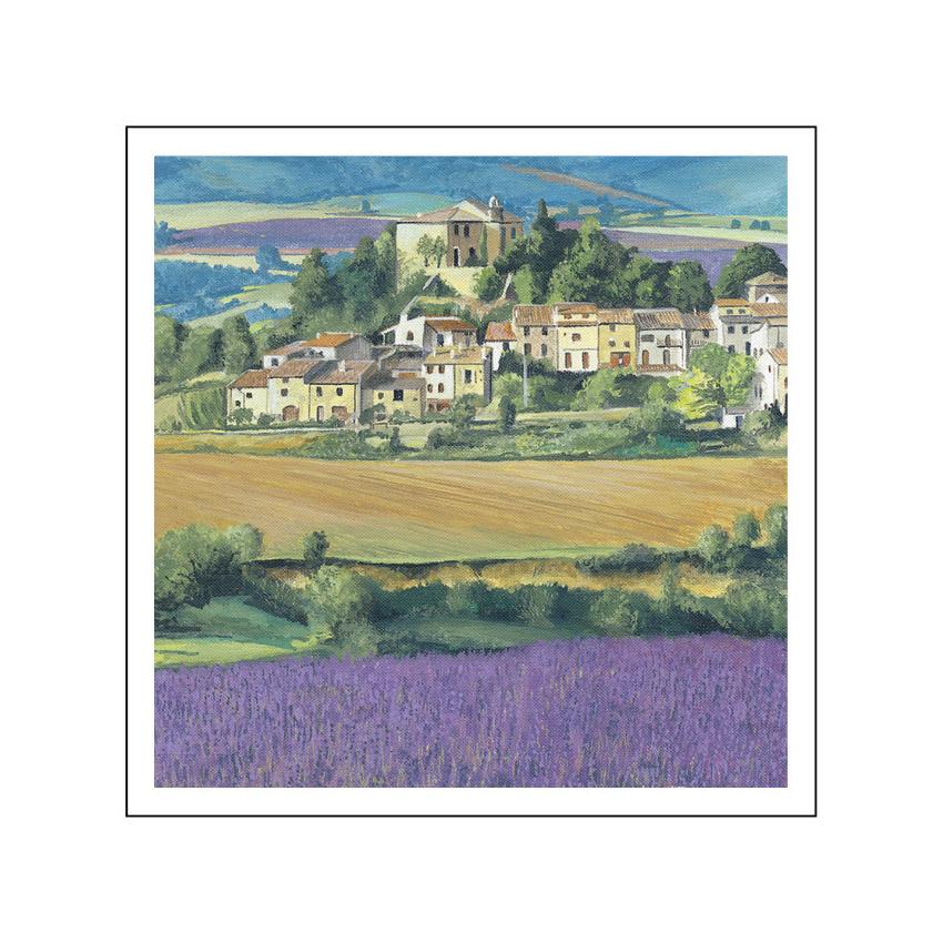 9C. Lavender fields, Roussillon